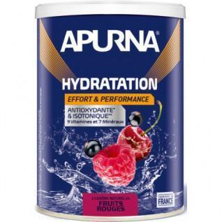 Boisson énergie Apurna Fruits rouges - 500g