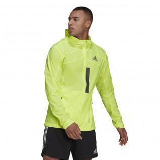 Veste adidas Marathon Translucent
